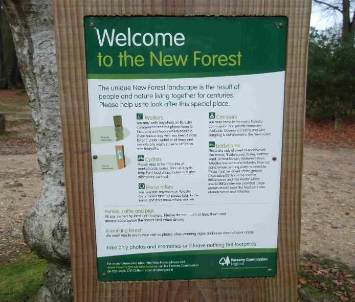 New Forest information board